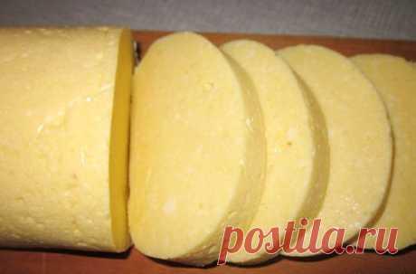 Сыр домашний из  творога и молока
