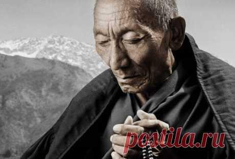 Как приобрести энергию жизни и преодолеть апатию - Новости Монголии, Бурятии, Калмыкии, Тывы