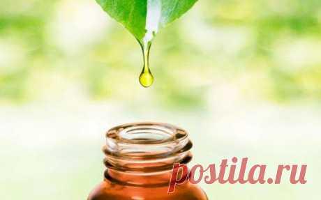 Как эфирные масла влияют на энергетику человека? С эфирными маслами ваша аура будет очищаться сама собой, без дополнительных процедур. Это настоящая магия, которая доступна каждому!Как пользоваться эфирными масламиСвое позитивное воздействие на нас ...