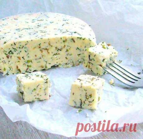 БЛОГ ПОЛЕЗНОСТЕЙ: Домашний сыр с зеленью и тмином - очень нежный и легко готовится