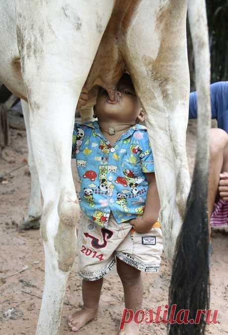 как надо пить молоко