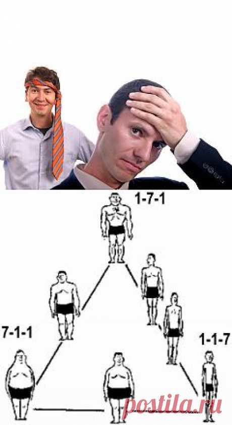 Какими мы бываем? Три типа телосложения | Психология