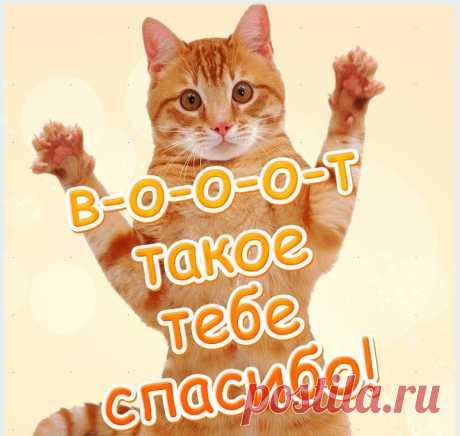 похвала прикольные стишки картинки для детей: 6 тыс изображений найдено в Яндекс.Картинках