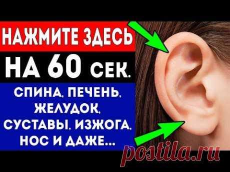 Нажмите Здесь на 60 секунд и смотрите, что произойдет с Вашим телом (6 точек уха)