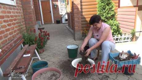 Как я делаю листовую землю быстро и без особых усилий
