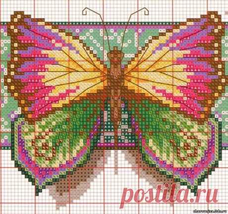 Великолепные бабочки. Вышивка.