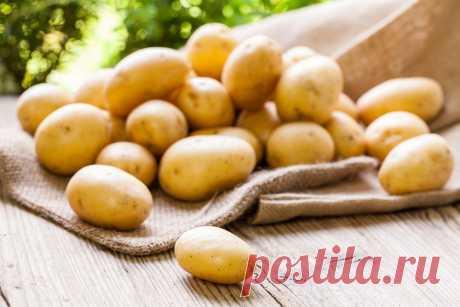 Полезный рецепт картофельных оладьев Считаете, что картошка противопоказана тем, кто хочет похудеть? Вовсе нет, если приготовить из нее низкокалорийное блюдо полезным способом.