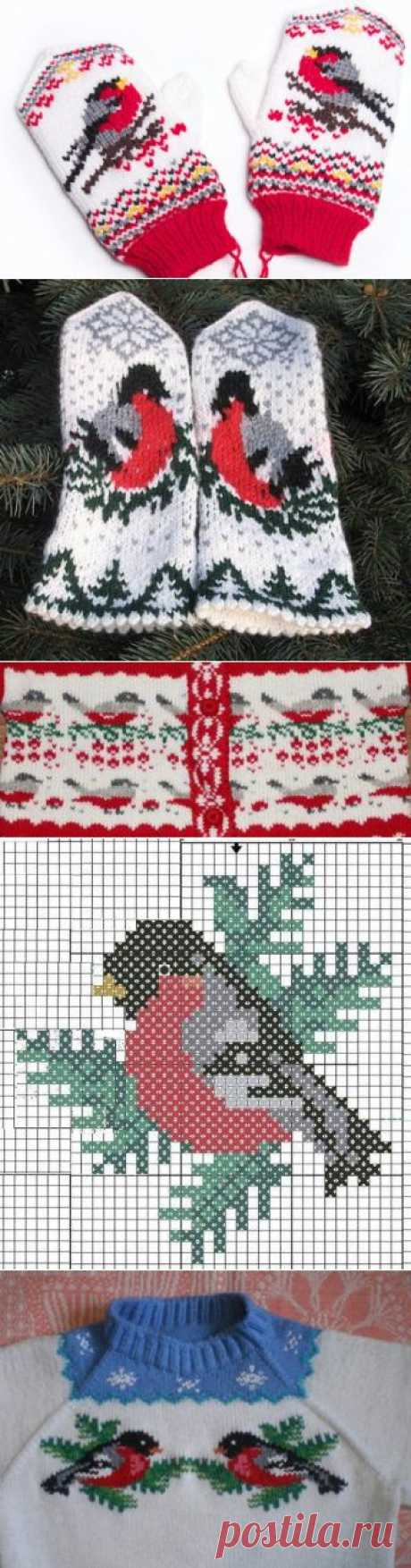 Ornament 'Bullfinch'. Schemes for knitting.   the Ladies' moneybox   Mittens, gloves, mitts   Posted