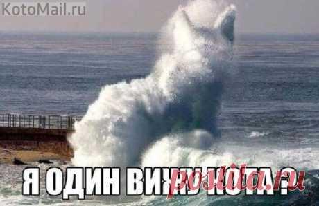 Необычная волна