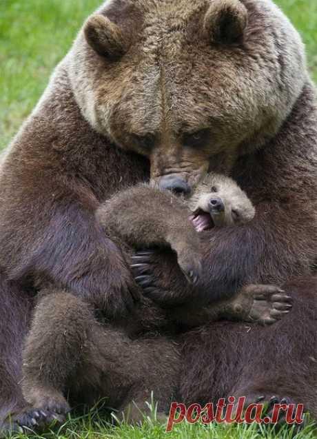 Мама и сын играют вместе...........