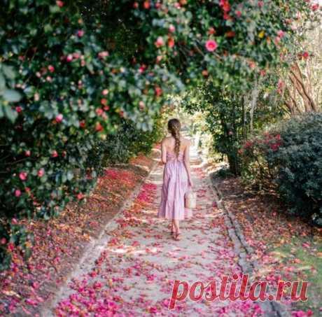 И пусть снова весна с нами делится сладкою тайной, Наполняя любовью и нежностью мир изнутри...  = Т. Городицкая =