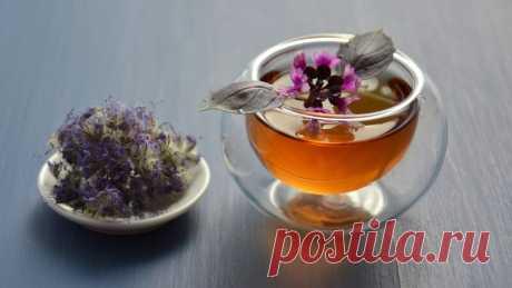 Медики дали рецепт идеального чая против рака и диабета Уникальный чай способен обезопасить организм от развития ряда опасных заболеваний.