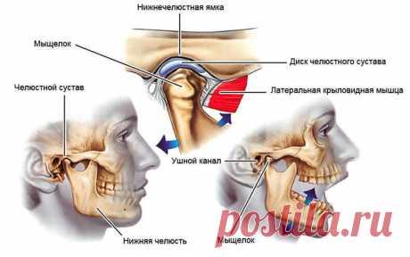 Горизонтальный зевок — упражнение для мягкой и безболезненной коррекции прикуса