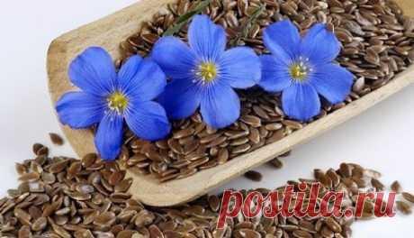 Как принимать семена льна для похудения? Видео | Здоров Будь
