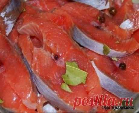 Соленая горбуша в масле с луком  В этом рецепте вы узнаете как засолить быстро рыбу и уже через час её можно будет кушать. Это безусловно вкусная засоленная рыба, попробуйте и убедитесь сами, это весьма оригинально. Рассмотрим, как засолить рыбу: Ингредиенты: Горбуша (свежемороженая) – 2 шт Вода – 1 л Соль – 5 ст. л. Масло растительное (нерафинированное подсолнечное) — 150 мл Лук репчатый — 1 шт Приготовление: Выпотрошенную рыбу режем на куски. Горбуша — рыба очень нежная, поэтому, чтобы бы