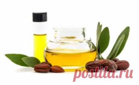 Масло жожоба помогает избавиться от морщин | Aranetta | Яндекс Дзен