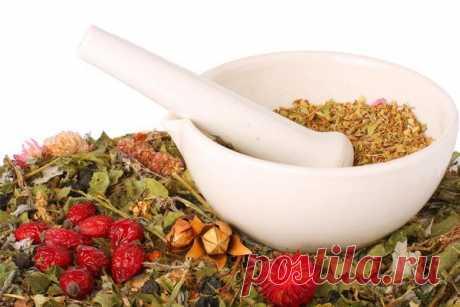Рецепты народной медицины при заболеваниях печени / Будьте здоровы