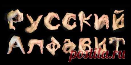 Весь русский алфавит в одной фразе   ЛИТИНТЕРЕС   Яндекс Дзен