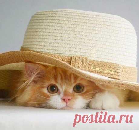 Солнышко в шляпке