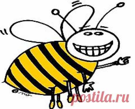 Как облегчить боль от укуса пчелы?   Красота и здоровье