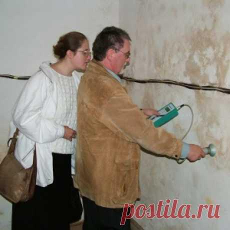Как убрать сырость в доме или квартире? - МирТесен