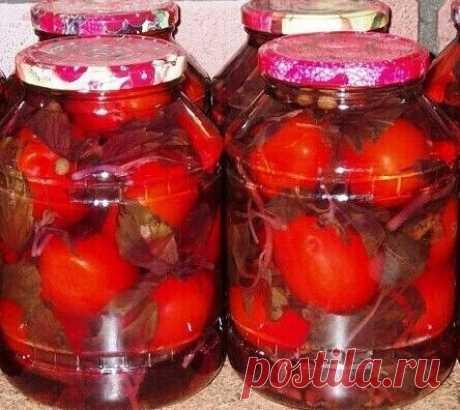 Быстрые маринованные помидоры в итальянском маринаде на зиму | Рецепты тёти АСИ | Яндекс Дзен