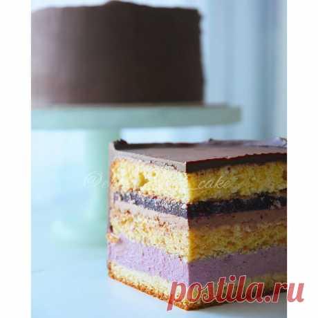 Поставила в холодильник идеальный торт, а достала весь в трещинах   Фееричная кондитерка   Яндекс Дзен