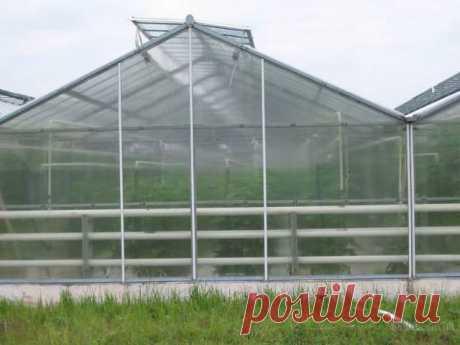 Поликарбонатные теплицы: особенности, преимущества, выбор материала для покрытия, каркаса, требования к возведению каркаса