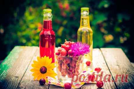Домашние настойки из ягод на спирту