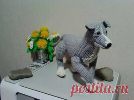 Питбуль, ч.2. Pitbull. р.2. Amigurumi. Crochet.  Амигуруми. Игрушки крючком.