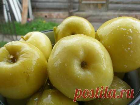 Вкусные рецепты маринования яблок на зиму своими руками