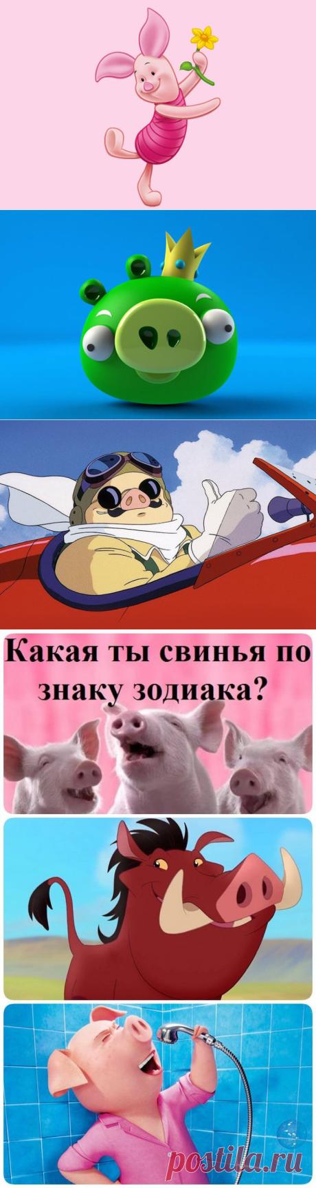 Какая ты свинья по знаку зодиака?   В темпі життя