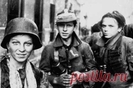 История большой лжи. Миф и правда о Варшавском восстании | История | Общество | Аргументы и Факты