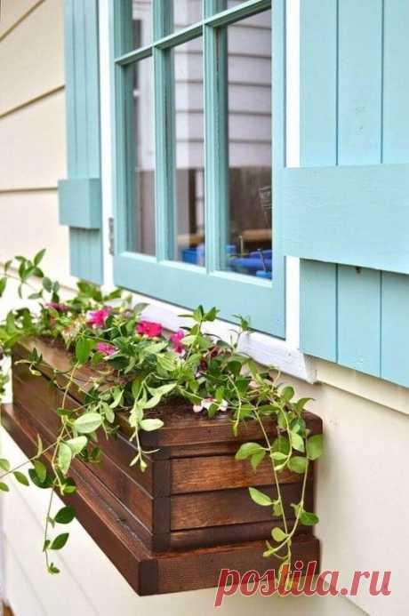Яркие идеи для дачи, как установить чудесные цветы в ящики за окном Один из чудесных способов украсить окно дома — установить яркие ящички с красивыми цветами за окно. Желательно выбирать окно, не выходящее к прямым солнечным лучам, либо высаживать растения, устойчивые к засухе, чтобы цветы не пострадали и радовали своим внешним видом весь сезон и даже больше.