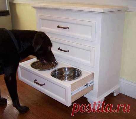 Задвинул ящик с кормом и ничего лишнего на кухне!