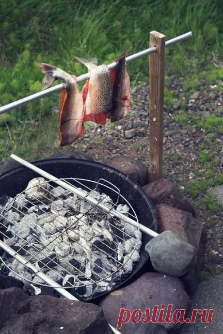 Все способы приготовления рыбы на природе     Рыба, запеченная на костре, в глине, бумаге, фольге, земле, песке, на камне и вертеле.Рыба, запеченная в глине.Развести  костер. Рыбу выпотрошить, чешую оставить. Натереть рыбу изнутри солью,  пол…