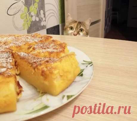 Про кошку, которая презирает семейные чаепития, если они проходят без неё