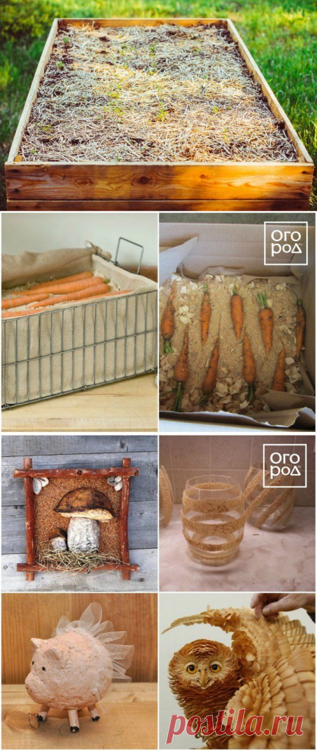 16 original ways of use of wood sawdust at the dacha