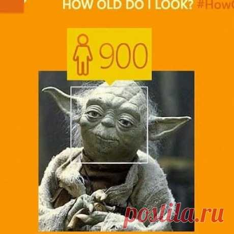 Как сделать прикольную фотографию Блог Сергея Ермолинского