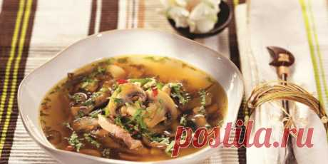 Острый куриный суп : Супы : Кулинария : Subscribe.Ru