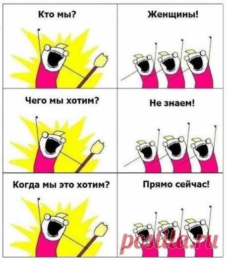 Поправки в Конституции в стиле «Кто мы? Женщины…. Чего хотим? Не знаем…. Когда хотим? Прямо сейчас» | Солана YTour | Яндекс Дзен