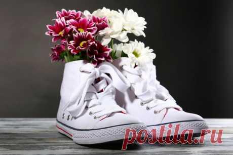 Что делать, если пахнут ноги и обувь: народные и аптечные препараты от зловония