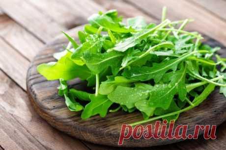 Рукола: как выращивать в огороде и на подоконнике