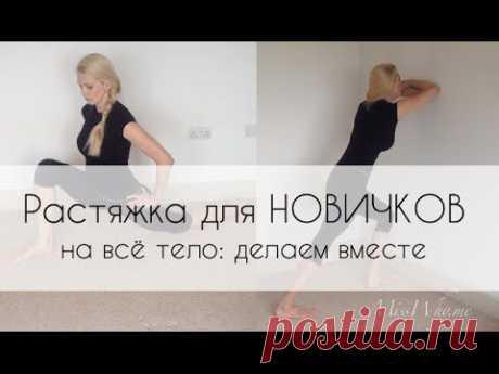 ▶ Растяжка для НОВИЧКОВ на всё тело: тянемся вместе - YouTube
