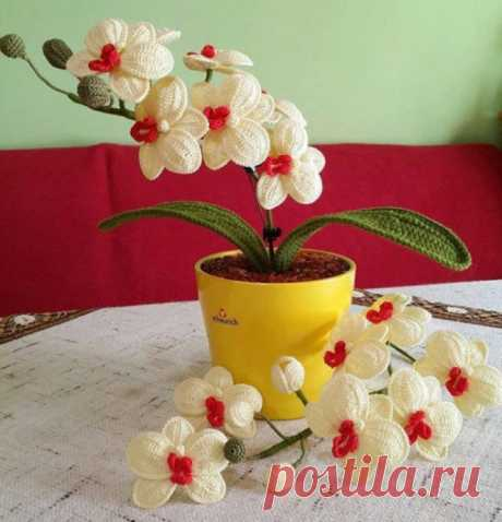 Орхидея крючком. Творите красоту