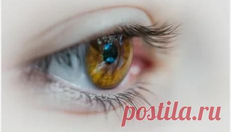 10 продуктов, которые улучшают зрение в любом возрасте, особенно после 50 | Всегда в форме!