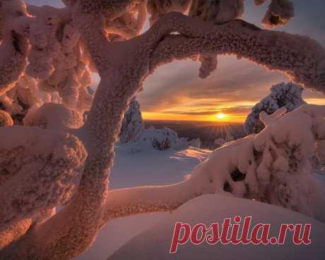 Картинки зима, солнце, лучи, снег, деревья, пейзаж, природа, заполярье, андрей базанов - обои 1280x1024, картинка №377933