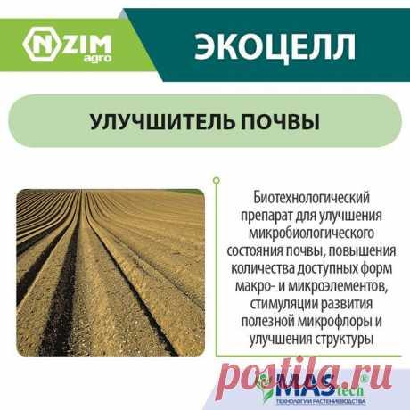 ЭкоЦелл ENZIM Agro ~ Биопрепарат для улучшения структуры почвы и доступности в ней макро- и микроэлементов ★ ЭНЗИМ (Украина) ★ Купить ➟ (067) 582-33-22, (095) 582-33-22
