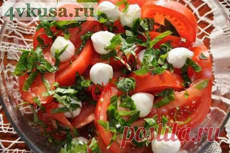 Салат из помидор, моцарелли и базилика   4vkusa.ru
