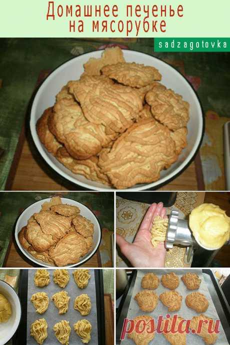 Фото-рецепт. Домашнее печенье на мясорубке — Сад Заготовки